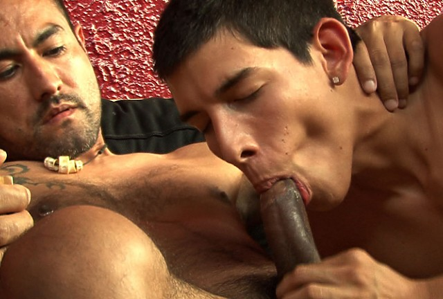 Cum Pig Brian Wood Sucking Another Latino Dick